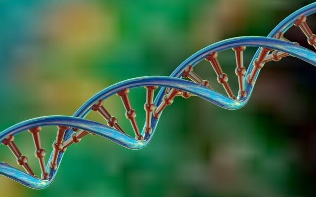 Bioengineers Have Developed Tool for Reprogramming Genetic Code