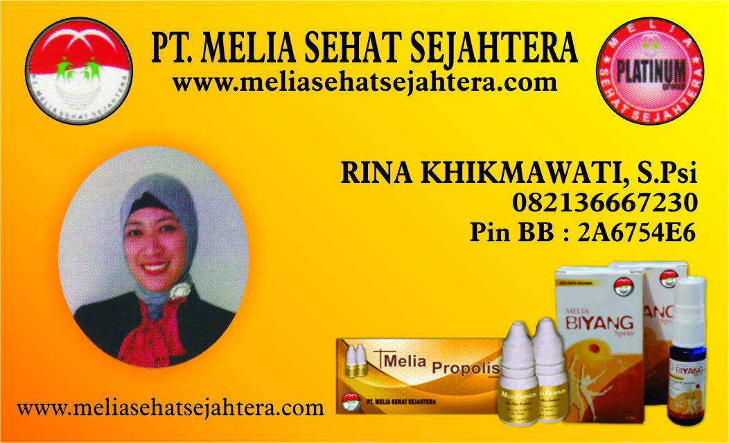 PT. MELIA SEHAT SEJAHTERA (2)