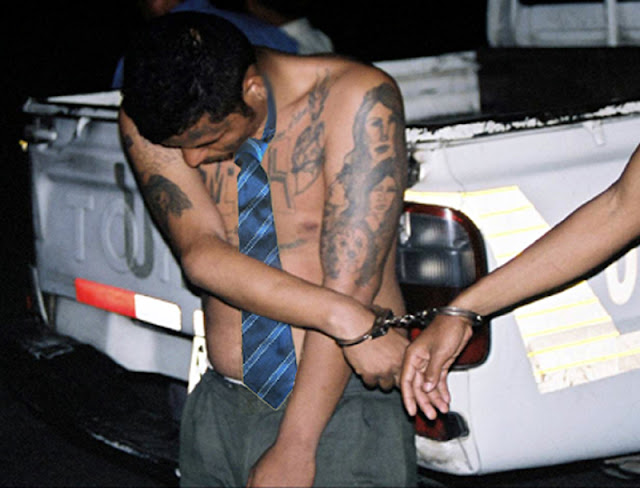 A gang member wearing a blue tie is arrested and handcuffed