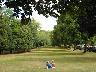 Peaceful grass and trees in Leamington Spa