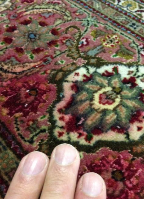 pet urine on rugs