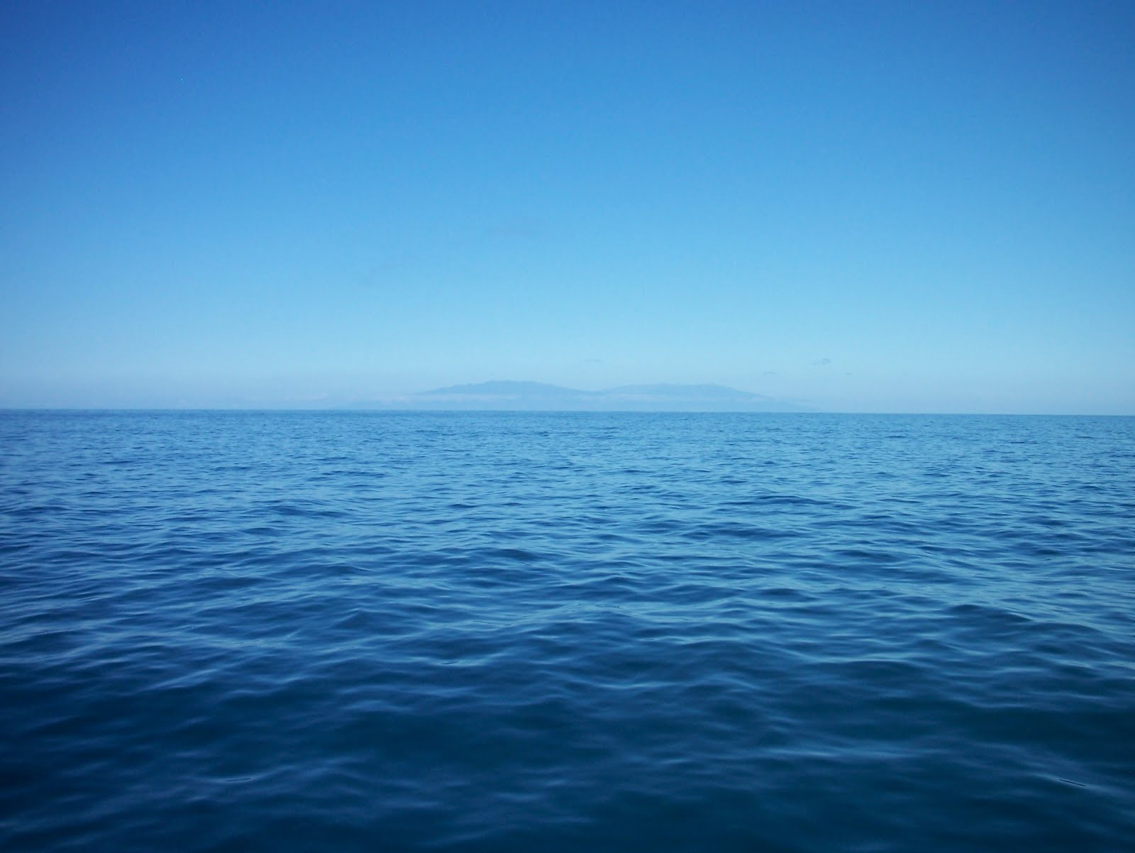 Image result for take care of our oceans images