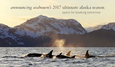 Seabourn Is Going to Alaska in 2017!!!!