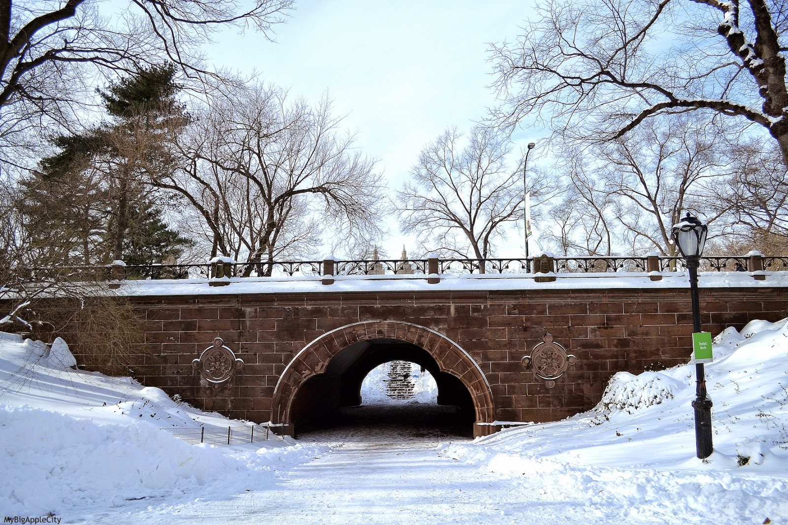 juno-2015-NYC-Blizzard-Central-park-snow