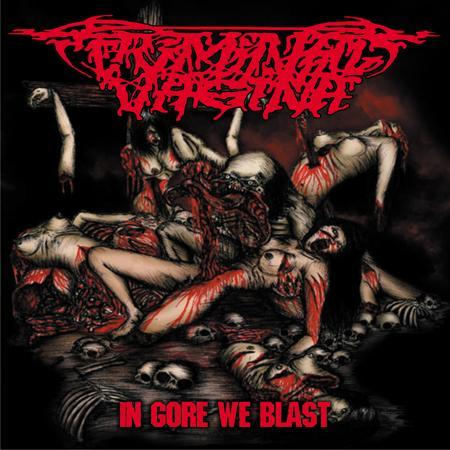 Album Review Download Criminal Vagina - In Gore We Blast 2011 - Brutal Porno Grind Music Style
