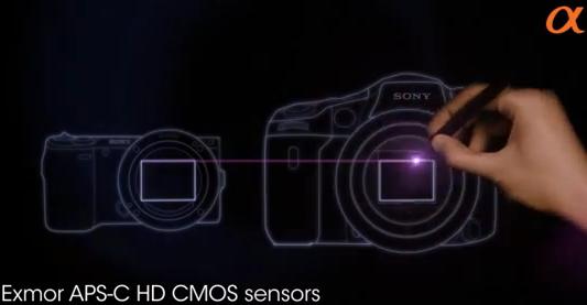 sony nex aps-c sensor size