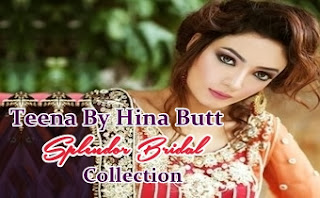 Hina Butt Bridal Dresses 2014