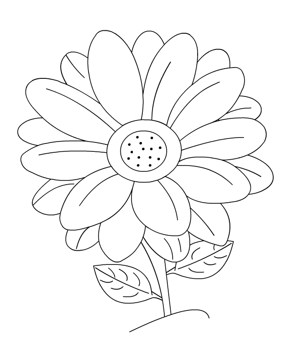 Categories : Flower coloring picures title=