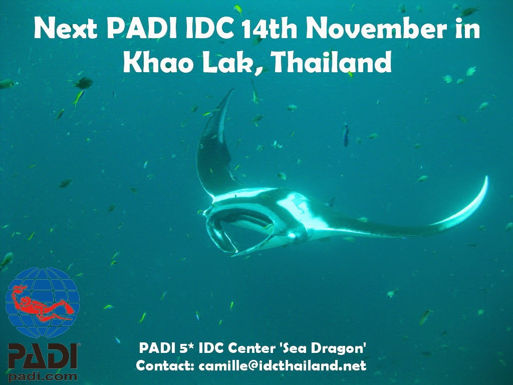 My next PADI IDC in Khao Lak, November 2014