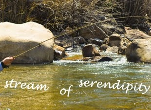 Stream of serendipity