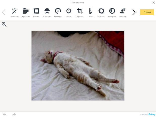 Бесплатный онлайн фоторедактор на Яндекс.Диск