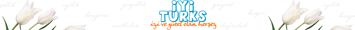 iyi turks