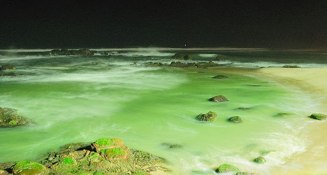 Night Green Beach Beautiful Nature Images And Wallpapers