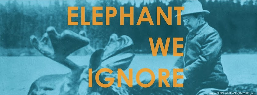 Elephant We Ignore