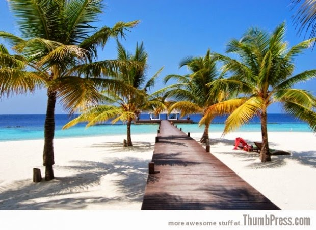 Clear water beaches of Maldives picture