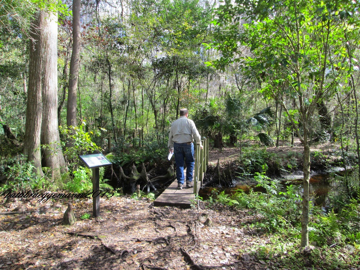 Lace up and walk weekend walking two new trails and a - Jacksonville arboretum and gardens ...
