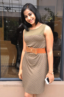 Swathi Dixit Pictures at break up press meet 001.jpg
