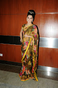 taapsee glam pics in saree-thumbnail-17