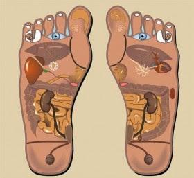 Reflexologia del pie izquierdo