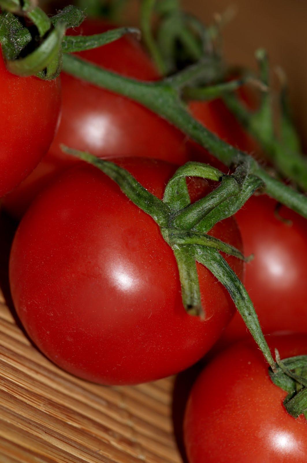 garderie drummondville attention les plants de tomates. Black Bedroom Furniture Sets. Home Design Ideas