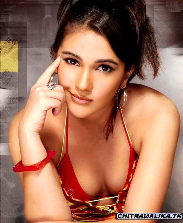 Sneha Tamil Actress Hot Se