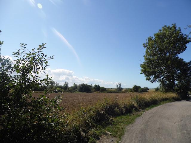 Droga prowadząca z Sarbinowa do Gąsek (Gmina Mielno)