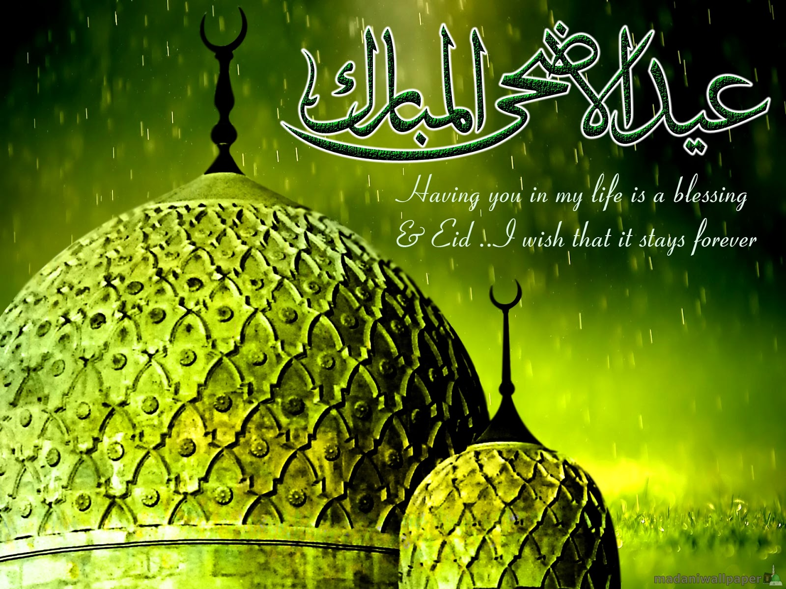8 best eid greeting cards 2015 eid mubarak to you and all your family kristyandbryce Image collections