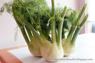 benefits_of_eating fennel_fruits-vegetables-benefits.blogspot.com(1)