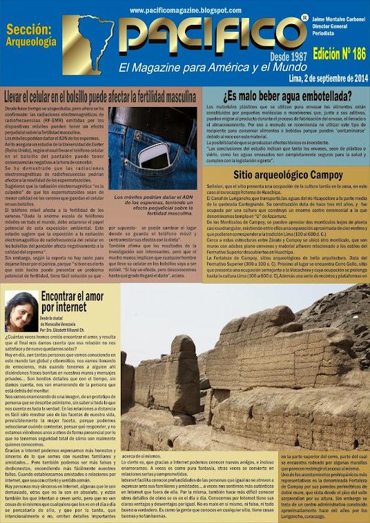 Revista Pacífico Nº 186 Arqueología