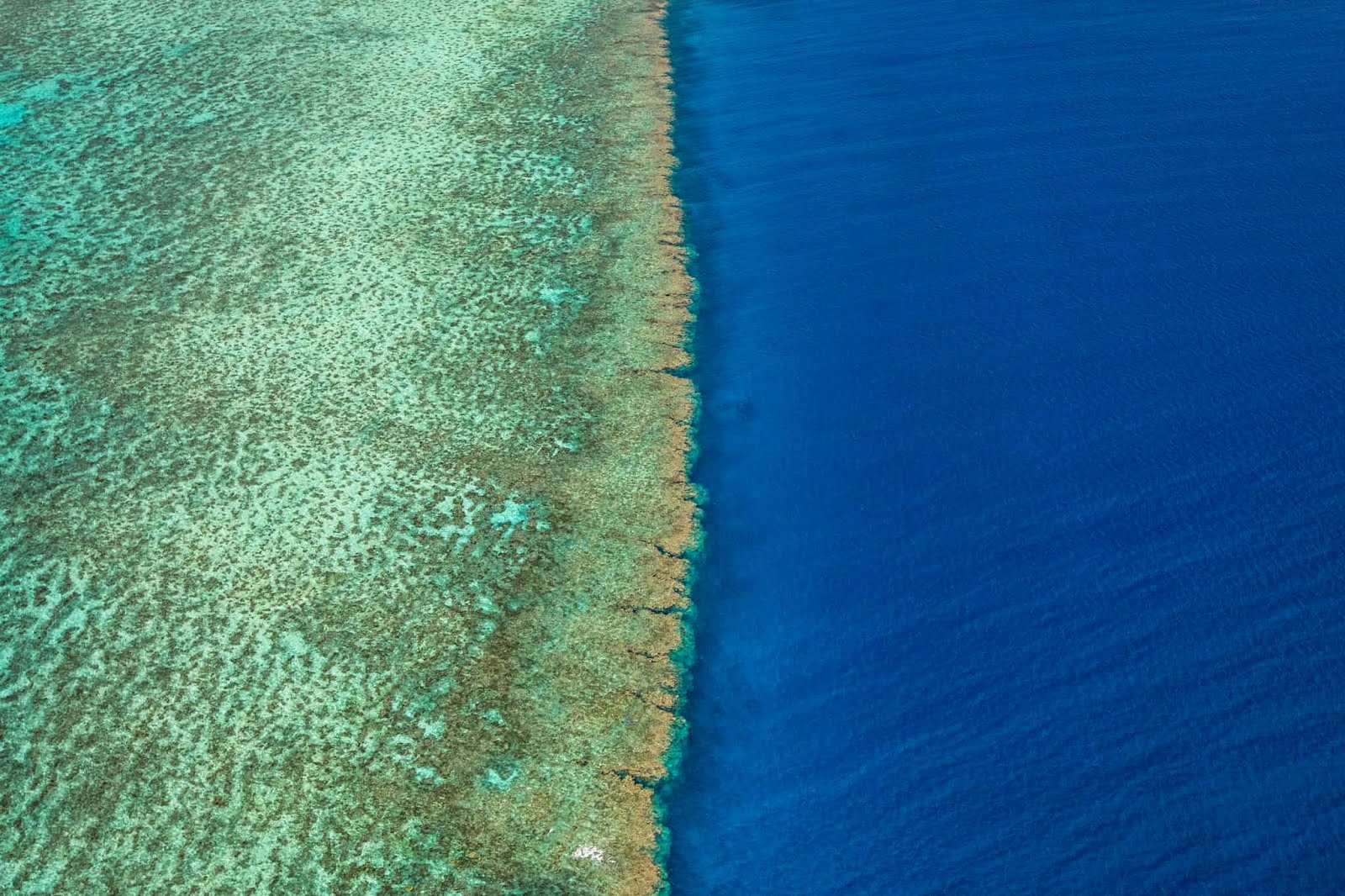 Gr. Barrier Reef