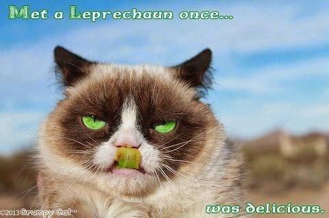 Grumpy Cat Christmas Memes J Ingle Bells