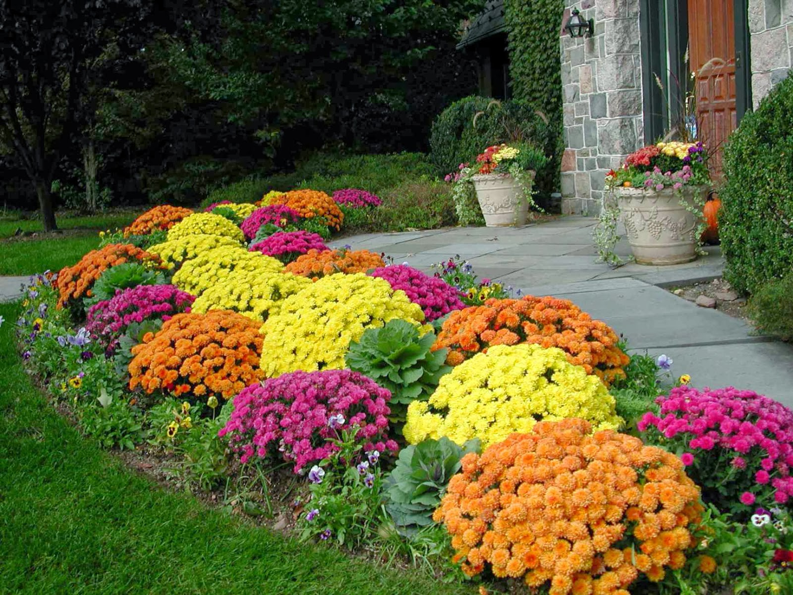 Planting flowers for fall for Flower garden landscape