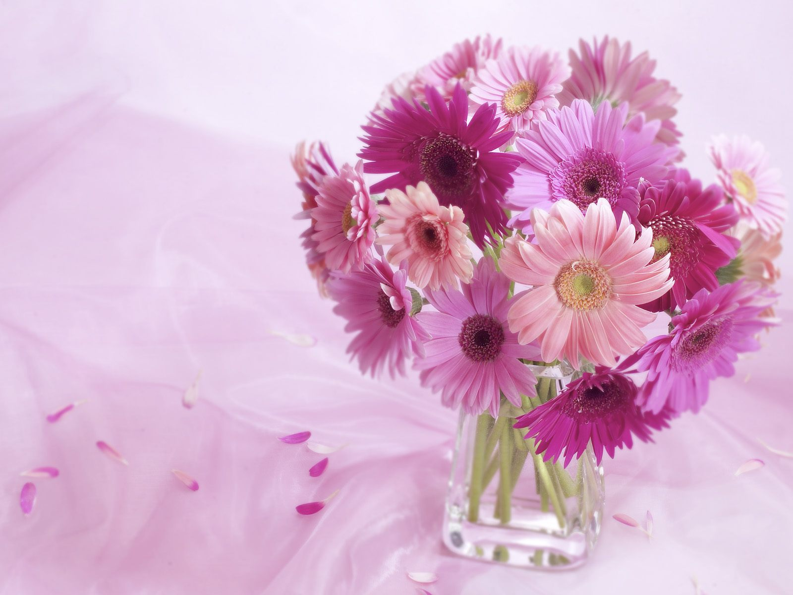 Beautiful Flower Wallpapers For You Vase Flowers Wallpaper