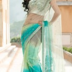 TRANSPARENT PARTY SAREE