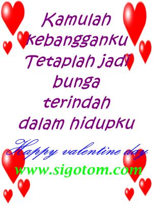 www.sigotom.com