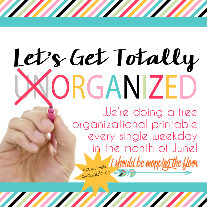 Have you downloaded the free organizational printables we're posting this month?
