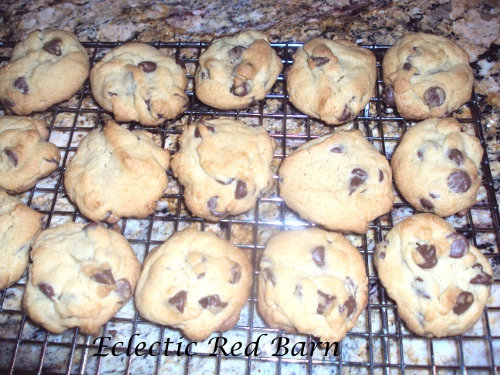 Chocolate Chip cookies cooling on wire rack