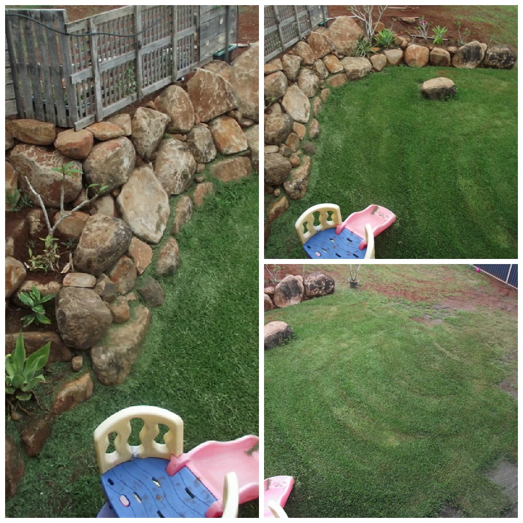 landscaping with kids the empowered educator