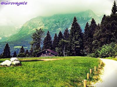 Malga Tovre Paganella Trentino