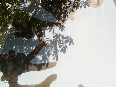 Rêve d'humanité, Exposition de Reza