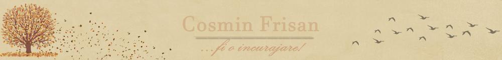 Cosmin Frisan