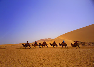 Ride a Camel in the Desert, appreciate it in your China travel tour to Dunhuang.