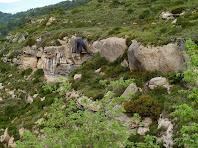 Paisatge de la Vinya Vella de Mussarra cremat en l'incendi de 2003