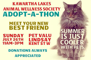image July 26 11AM-3pm Kawartha Lakes Animal Wellness Society Adopt-a-thon Pet ValuKent St. W  Lindsay