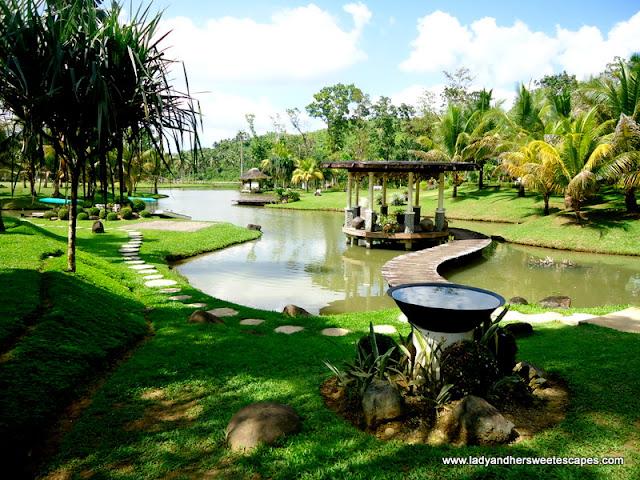 backdrop at Rafael's Farm Leyte