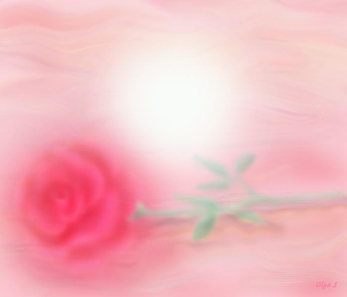 роза, цветок, иллюстрация