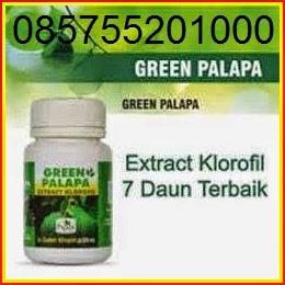 GREEN PALAPA KAYA MANFAAT