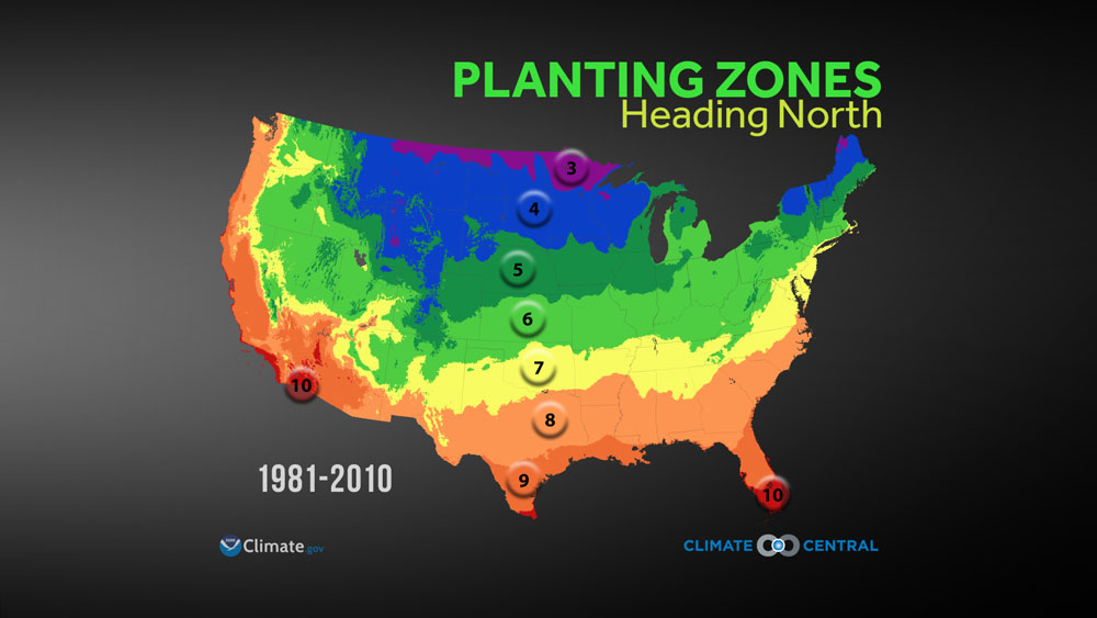 Rukavinas Extreme Weather And Climate Blog Planting Zones - Planting zone map of us