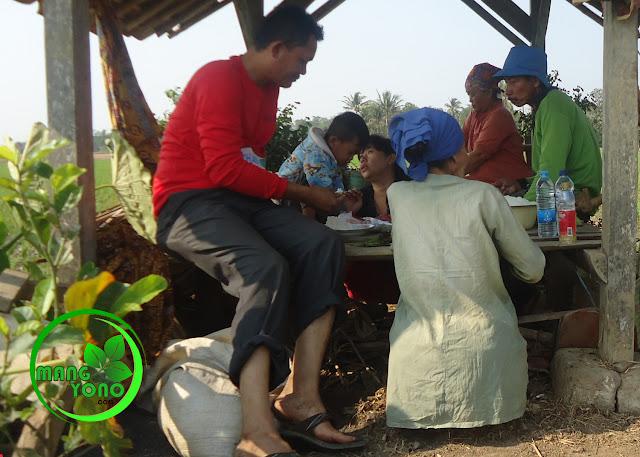FOTO : Makan bersama keluarga disaung sawah... walau makanan seadanya... tapi terasa nikmat..
