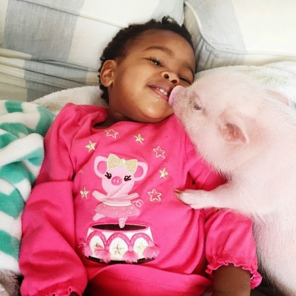 girl pet pig adorable friendship libby and pearl-2